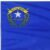 Group logo of Nevada State FOLU Group