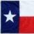 Group logo of Texas State FOLU Group